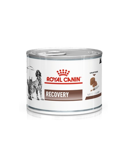 Recovery Cats/Dogs (Pack 12 latas)