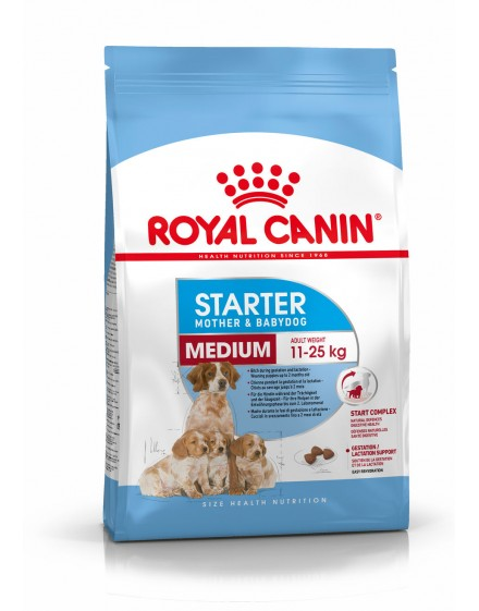 ROYAL MEDIUM STARTER